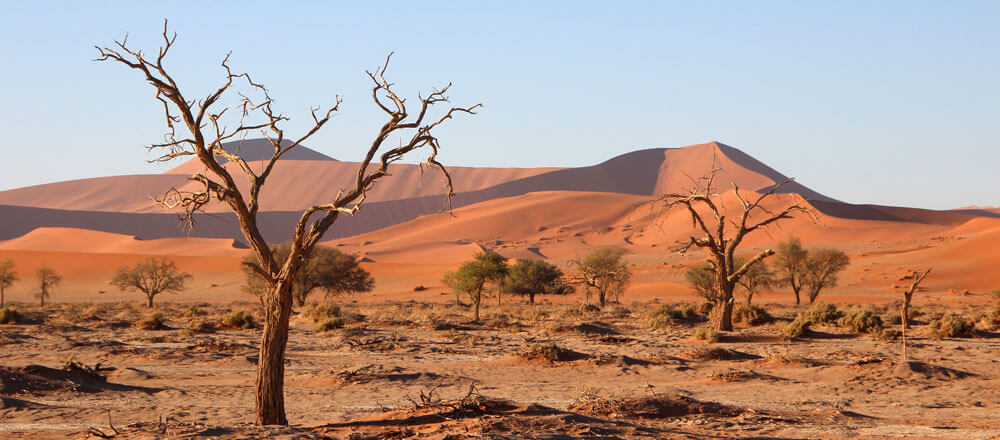 Sossusvlei - unendliches rotes Dünenmeer in Namibia