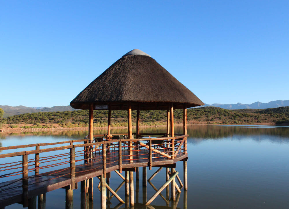 Buffelsdrift Game Lodge Oudtshoorn